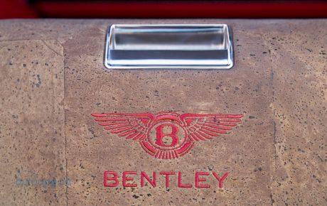 人道主義抬頭  Bentley將為素食者打造蘑菇皮內裝?